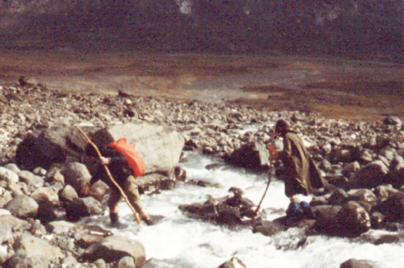 Sarek 1983