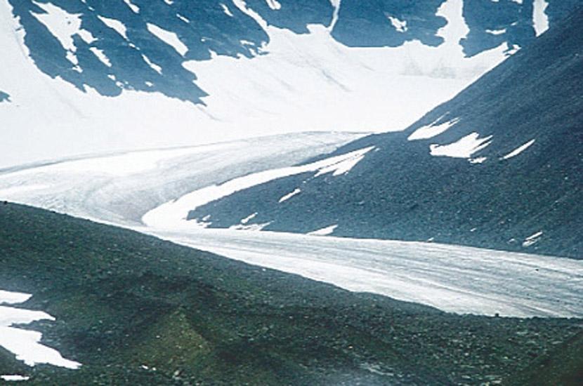 Sarek 1996. Die Mikka-Gletscherzunge.