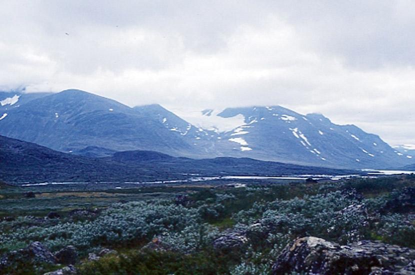 sarek 2000. Blick zurück auf die Sarek-Berge.